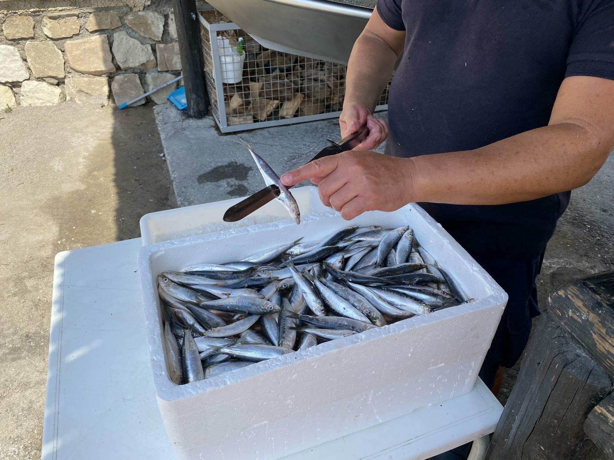 Espetero preparando pincho de espeto con caja de sardinas