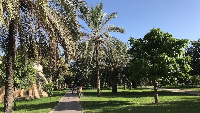 Carril bici en el Jardín del Turia Valencia