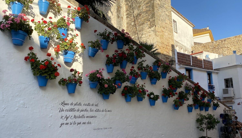 Macetas azules con geranios blanco en Marbella