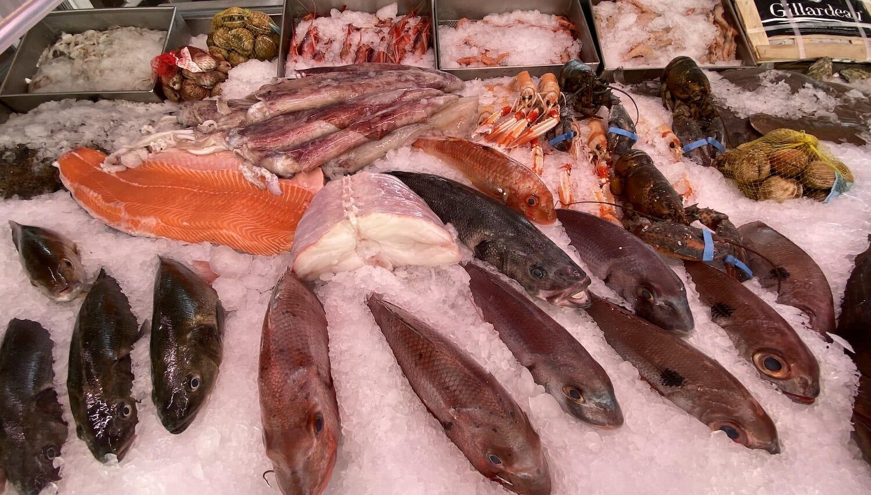 Pescado fresco variado de Málaga