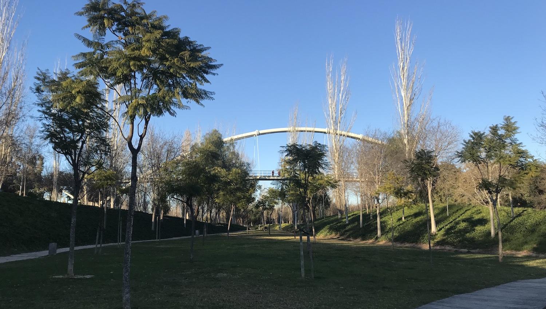 Puente del Parque de Cabecera Valencia